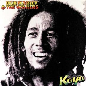 I regnet med Bob Marley